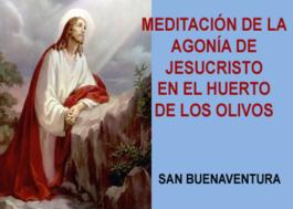 Meditación de la agonía de Jesucristo en el Huerto de los Olivos