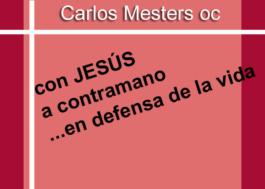 Con Jesús a contramano en defensa de la Vida
