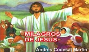 Milagros de Jesús 1 y 2 (Ilustrado)