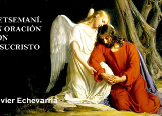 Getsemaní. En oración con Jesucristo