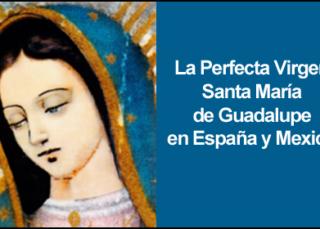 Descargar Libro PDF La Perfecta Virgen Santa María de Guadalupe en España y México