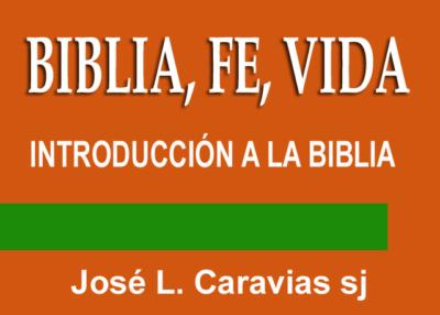 Libro eBook Biblia, Fe, Vida