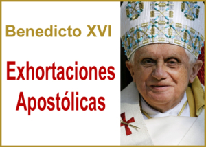 Libro eBook Exhortaciones apostólicas