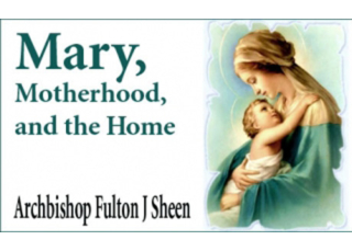 Download eBook PDF Mary, Motherhood, and the Home