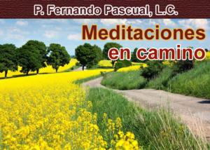 Libro eBook Meditaciones en camino