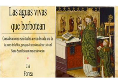 Libro eBook Las aguas vivas que borbotean