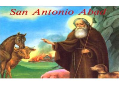 Libro eBook San Antonio Abad y San Pablo Ermitaño