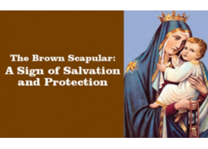Book eBook The Brown Scapular, the Most Powerful Sacramental