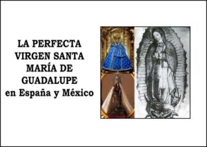 Libro eBook La Perfecta Virgen Santa María de Guadalupe en España y México